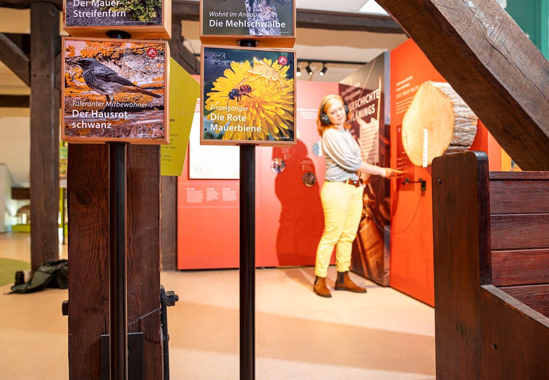 Naturparkzentrum_Hoher_Flaeming_Ausstellung_FischundBlume_11