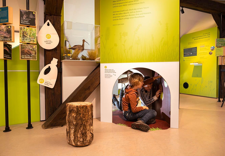 Naturparkzentrum_Hoher_Flaeming_Ausstellung_FischundBlume_16