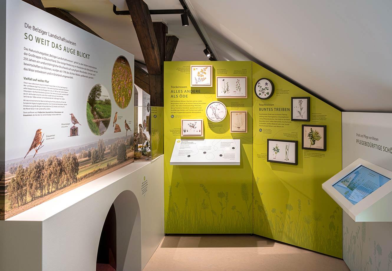 Naturparkzentrum_Hoher_Flaeming_Ausstellung_FischundBlume_17
