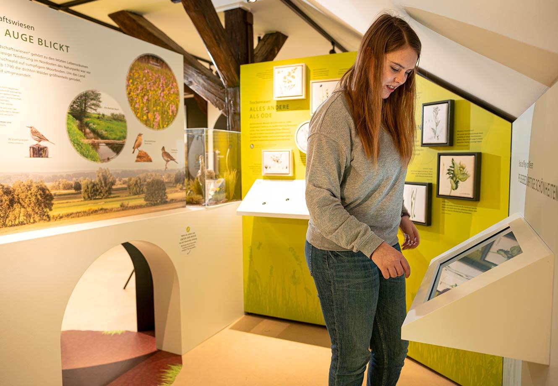 Naturparkzentrum_Hoher_Flaeming_Ausstellung_FischundBlume_17c