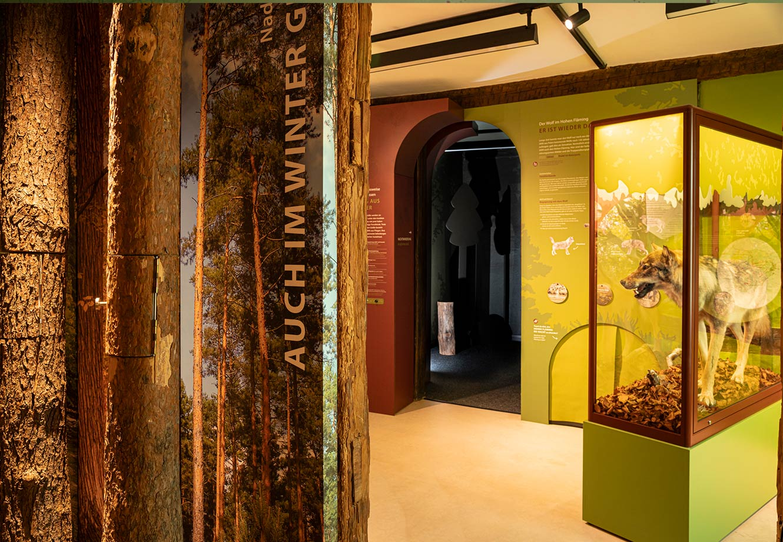 Naturparkzentrum_Hoher_Flaeming_Ausstellung_FischundBlume_20