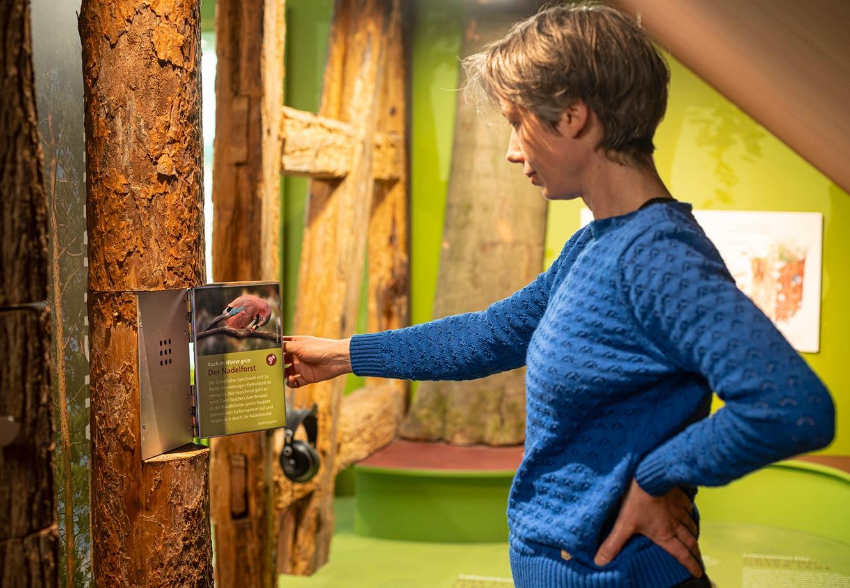 Naturparkzentrum_Hoher_Flaeming_Ausstellung_FischundBlume_25