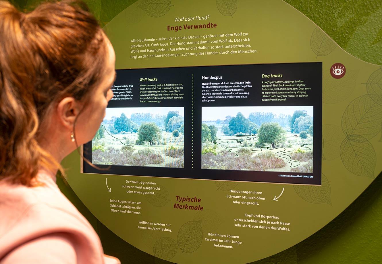 Naturparkzentrum_Hoher_Flaeming_Ausstellung_FischundBlume_26